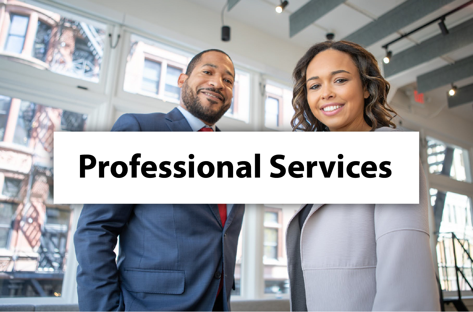 Professional Services1 02